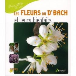 Les fleurs du Dr Bach et leurs bienfaits