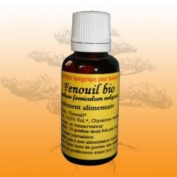 Fenouil (Anethum foeniculum vulgaris)