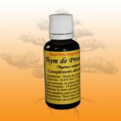 Thym de Provence (Thymus vulgaris)